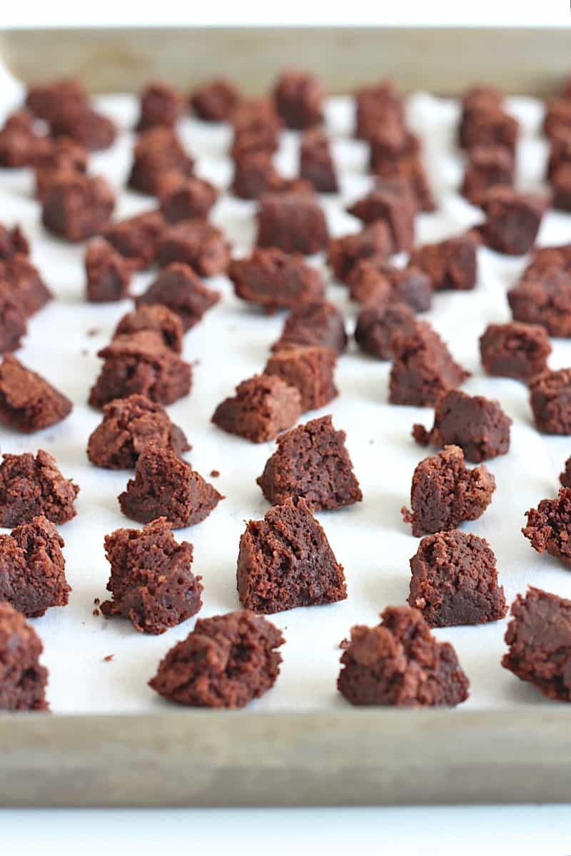 Frozen Brownie Bites - little bites of frozen brownie bliss waiting in the freezer to curb those late night chocolate cravings!