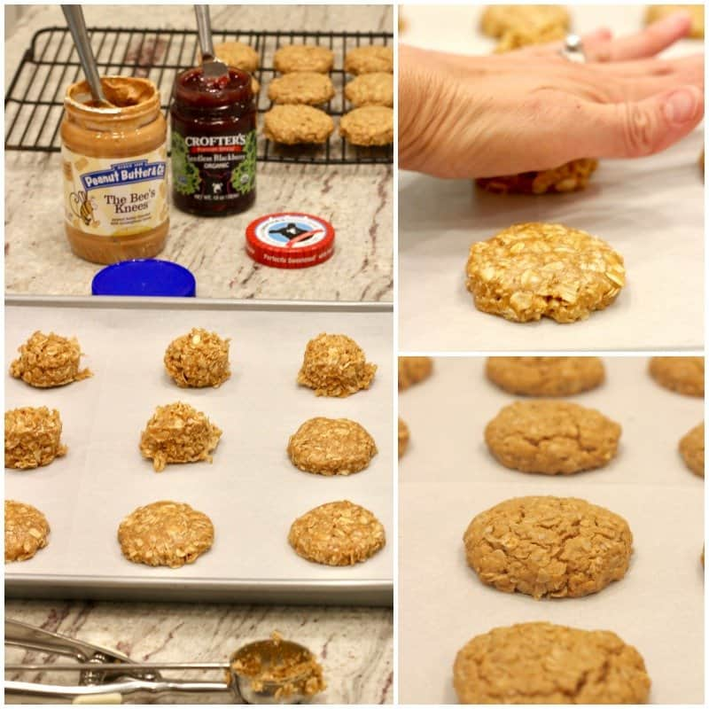 Healthy Flourless Peanut Butter & Jelly Cookie Sandwiches
