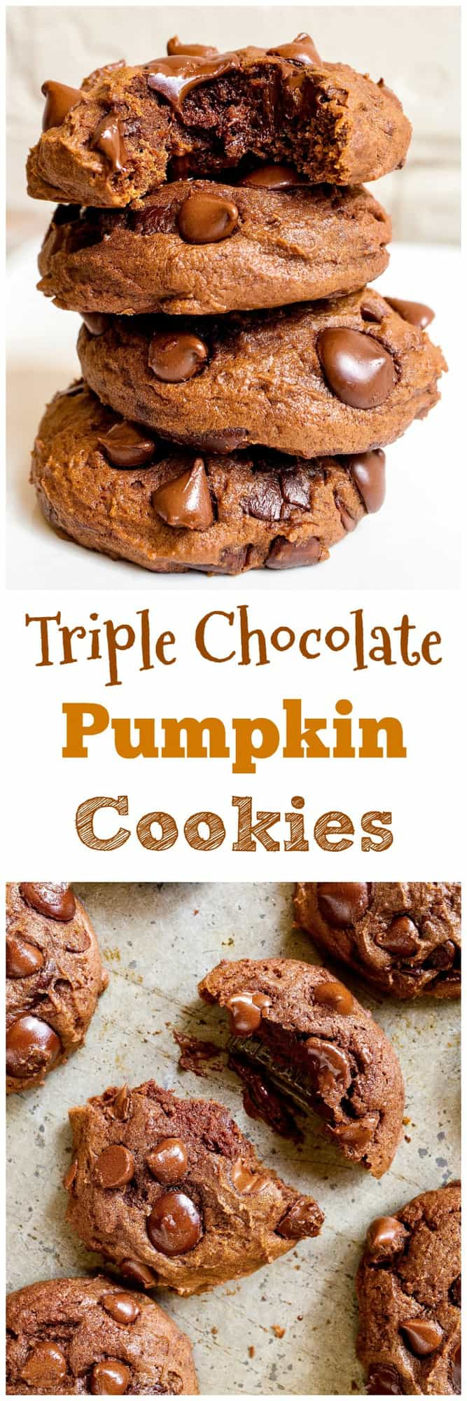 Triple Chocolate Pumpkin Cookies