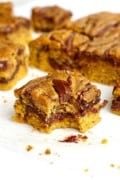 Nutella Swirled Pumpkin Cake Bars
