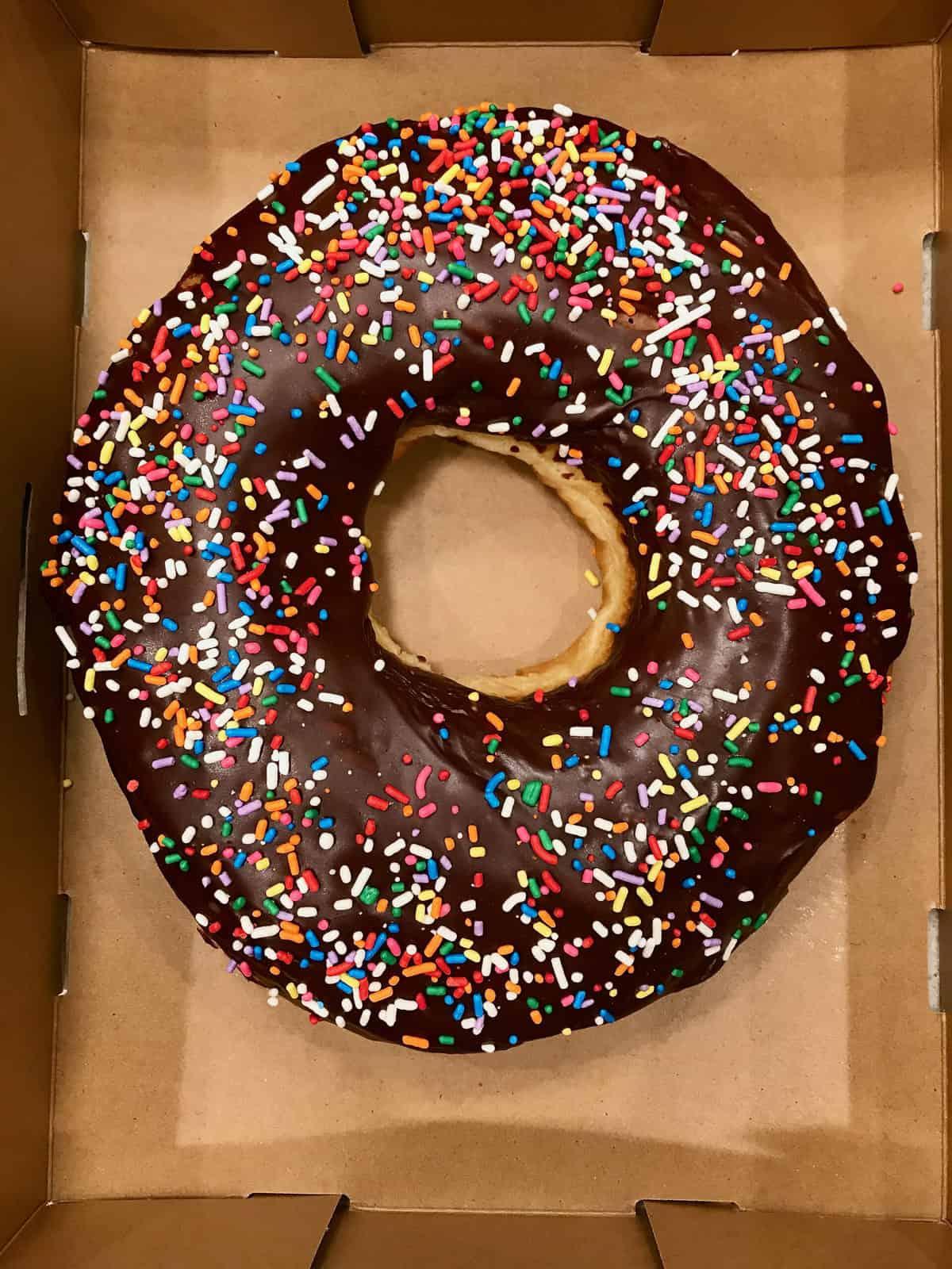 "12"" Donut Cake Base"