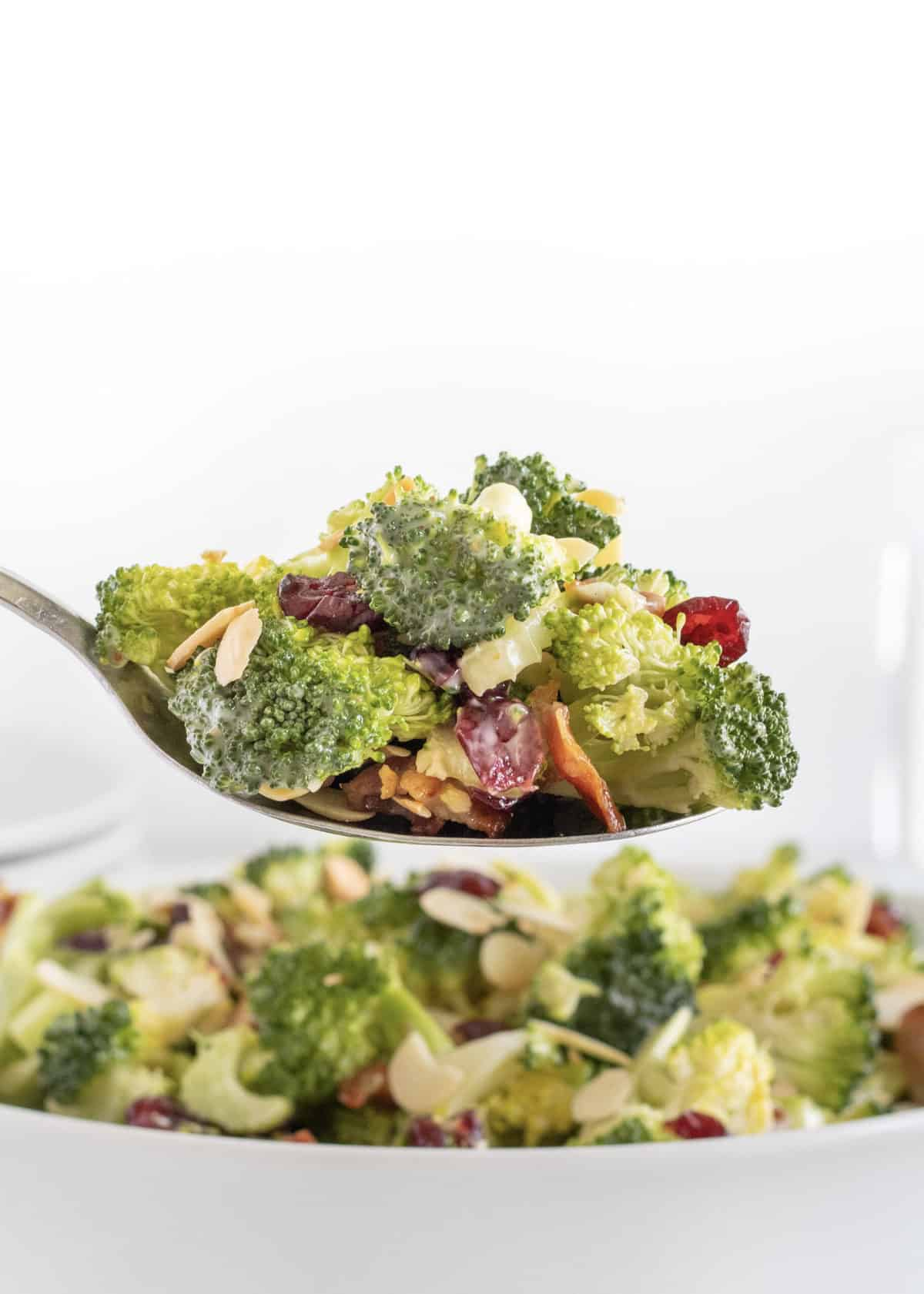 Broccoli Salad by The BakerMama