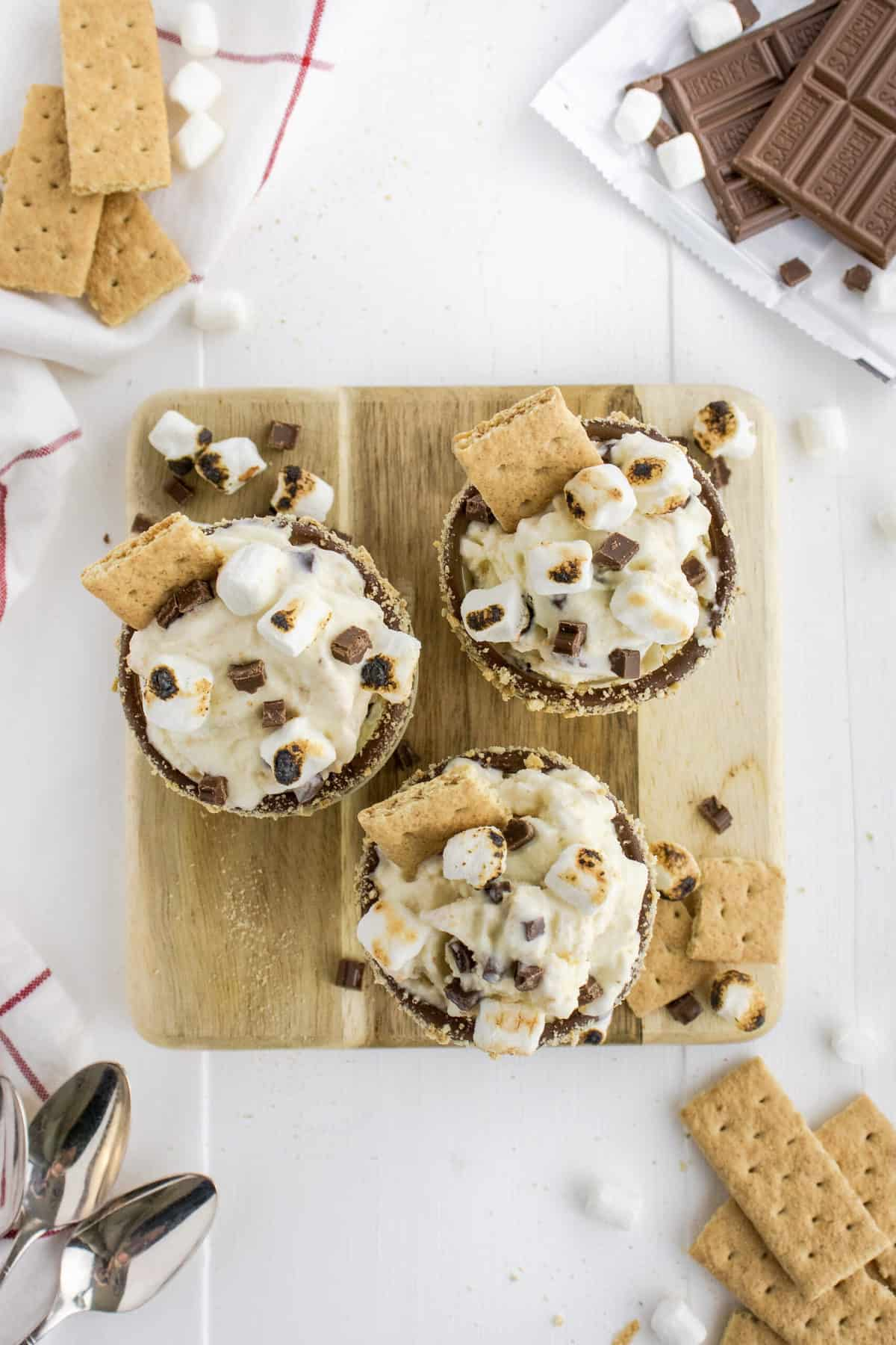 Homemade S'mores Blizzard by The BakerMama