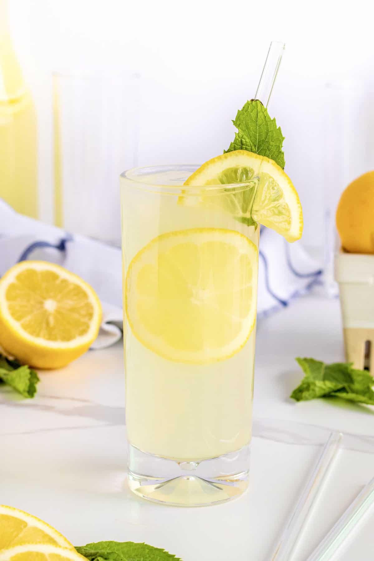 Fresh Mint Lemonade by The BakerMama